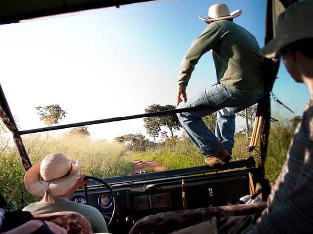 Un Pantanal, des animals - Brésil