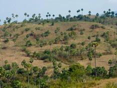 Croisière au pays des dragons - Komodo