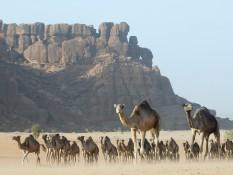 Tchad - Le Sahara des origines