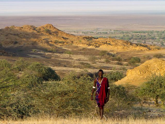 Tanzanie - Safari au cœur du pays massaï