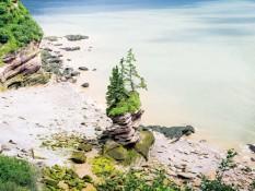 La tentation du homard - Nouveau-Brunswick / Canada