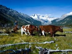 Les rivières de la discorde - Chili / Patagonie