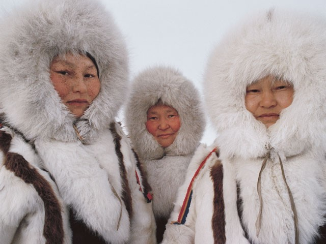 Sibérie - Au pays des Nénètses