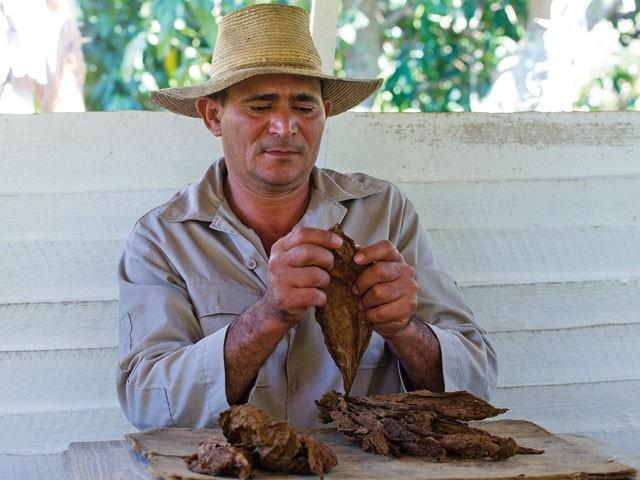 Cuba - Patrie, cigares et vieux capots