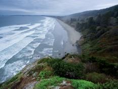 Californie - Sur la piste des séquoias géants