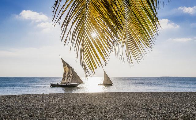 Traquenard à Zanzibar