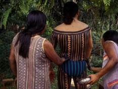 Dans la jungle pas si sauvage - Amazonie