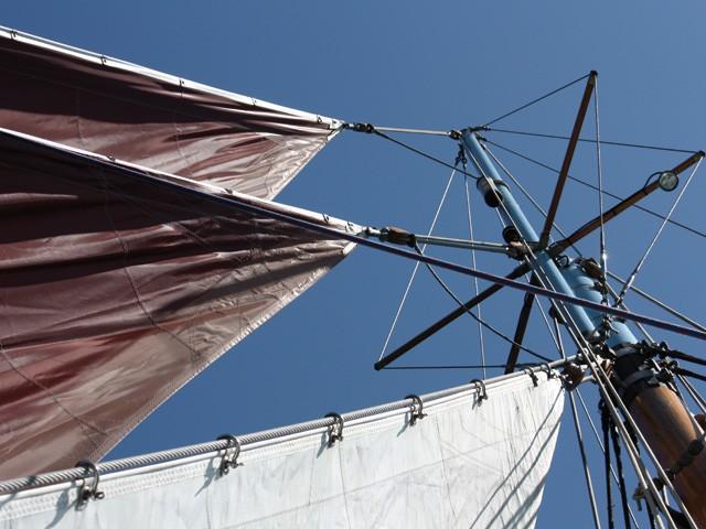 Vogue le navire