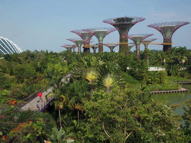 Singapour - Escale dans la cité du Lion