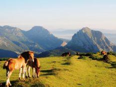 L'autre pays basque