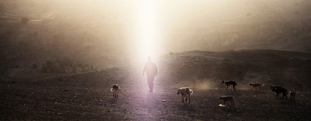 Ashayer, les nomades du désert - Iran