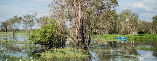 Frissons à Kakadu - Australie