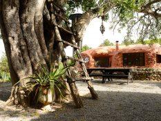 L'autre côté d'Ibiza -  Rois de la récup