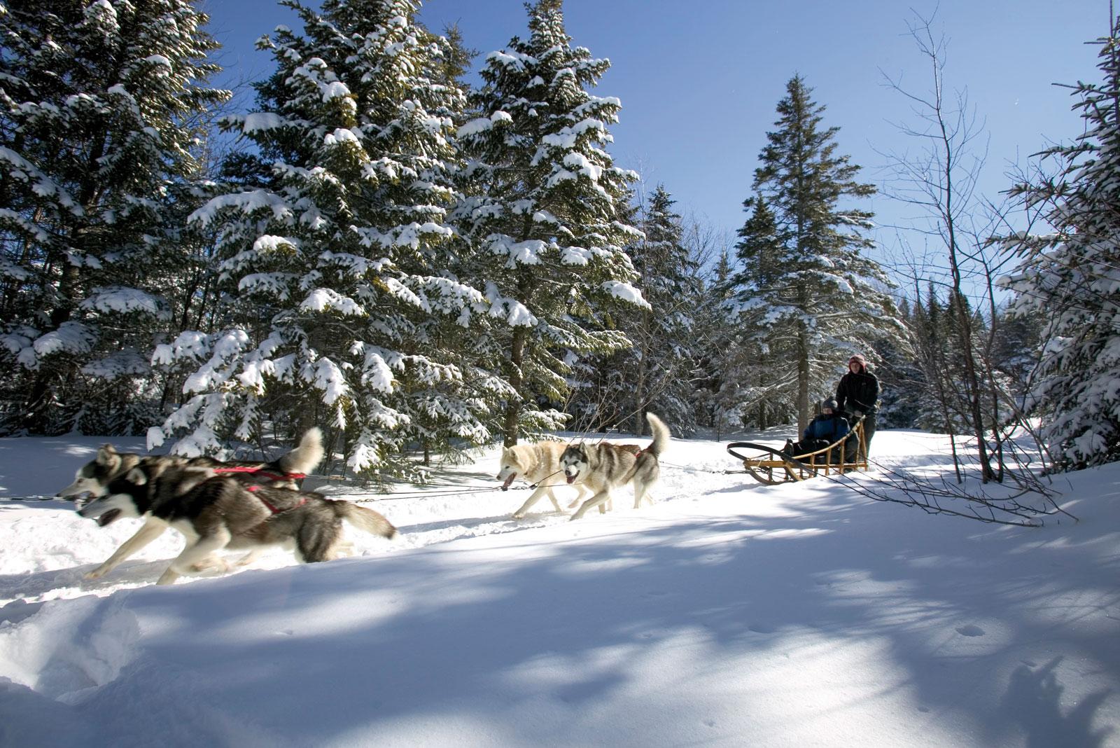 Mon pays, c'est l'hiver - Québec