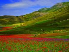 6 LIEUX À DÉCOUVRIR EN ITALIE (4) – FIORITURA