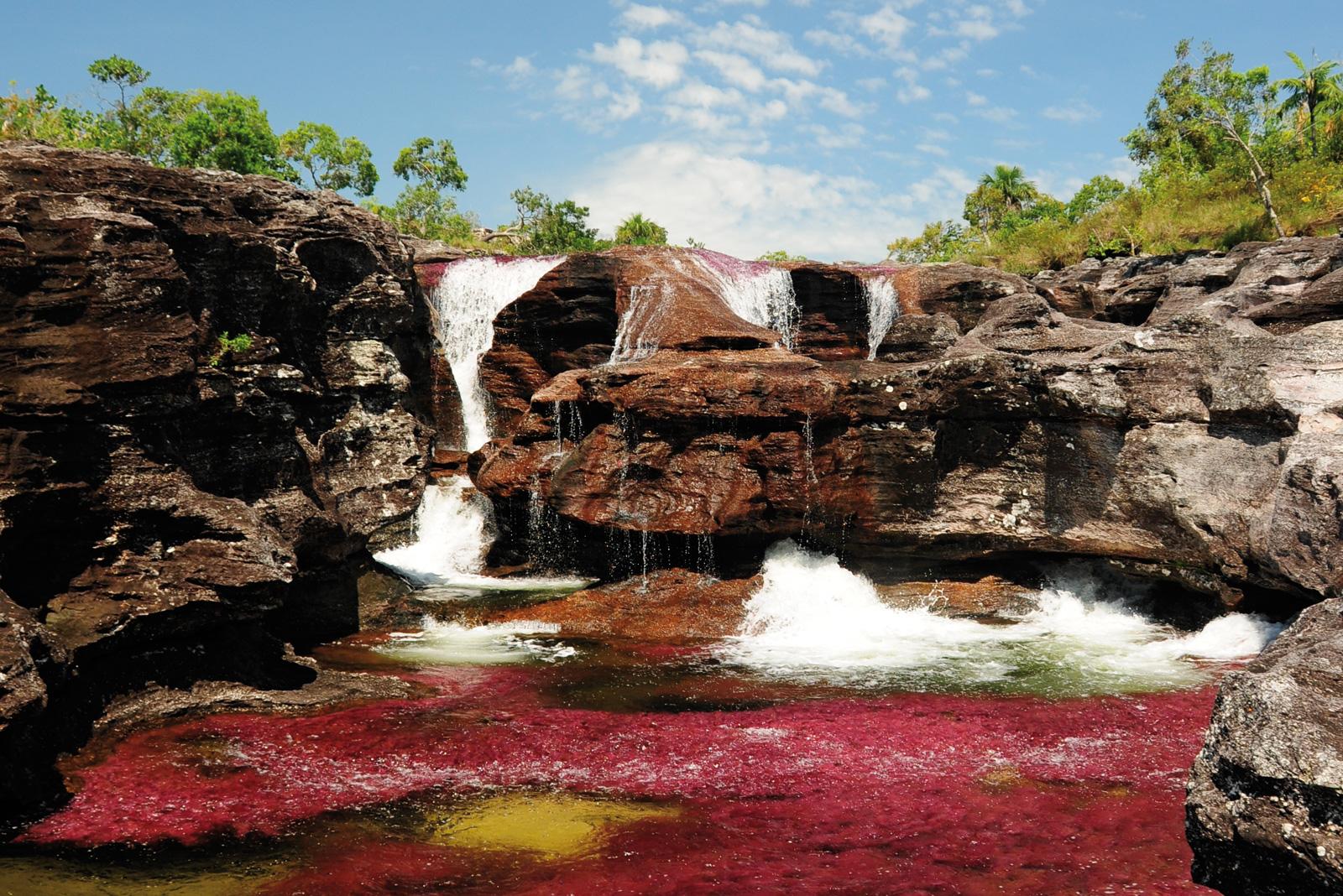 7 lieux à découvrir en Colombie (4) - Caño cristales