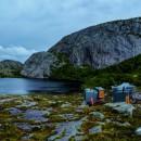 La vie sauvage à Skapet en Norvège