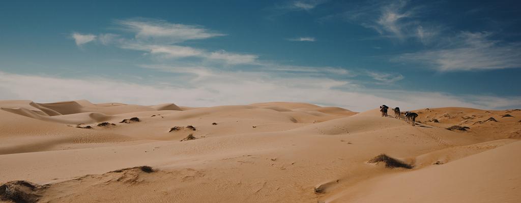 Dans le désert mauritanien de l'Adrar - A/R Magazine voyageur 2017