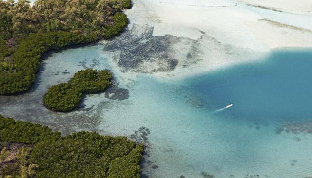 Lire Le Clézio chez lui / Île Maurice - A/R Magazine voyageur 2018