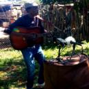 Safari sonore au Botswana - A/R Magazine voyageur 2018