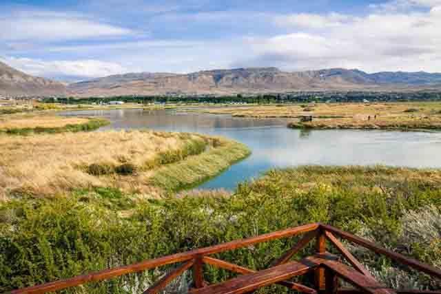Observer la faune de la laguna Nimez en Patagonie - A/R Magazine voyageur 2018