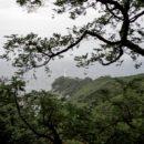 Yakushima : essuyer un typhon sur l'île de la princesse Mononoke - A/R Magazine voyageur 2018