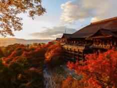 Le Japon, terre de contrastes - A/R Magazine voyageur