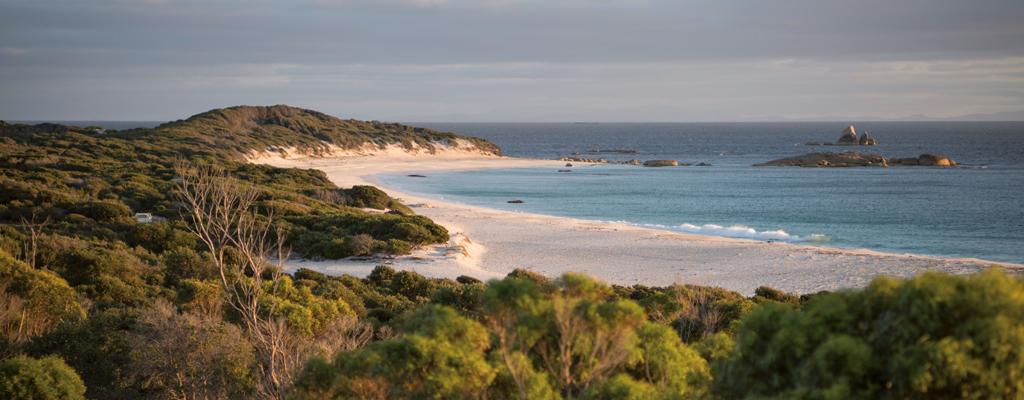 Australie - Tasmanie, île sauvage