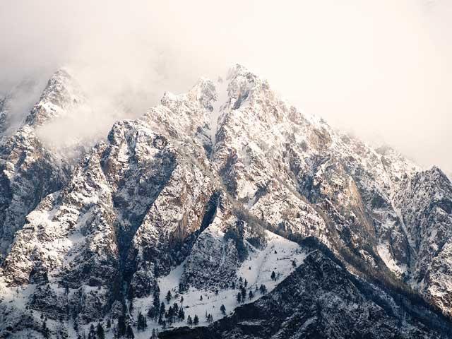 Yarsagumba, le viagra de l'Himalaya - A/R Magazine voyageur 2019