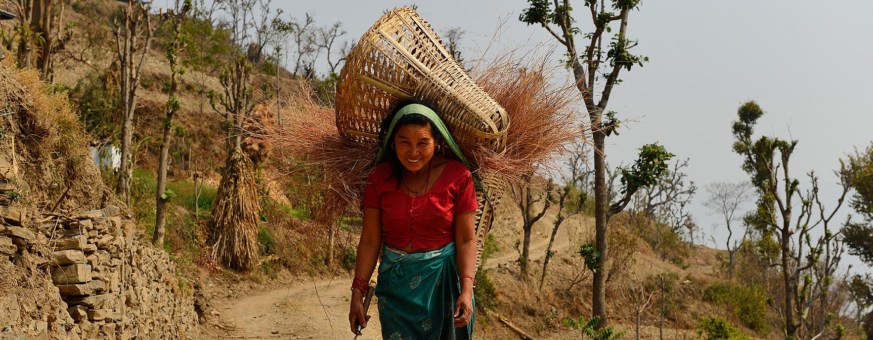 Népal - Montagnes au féminin