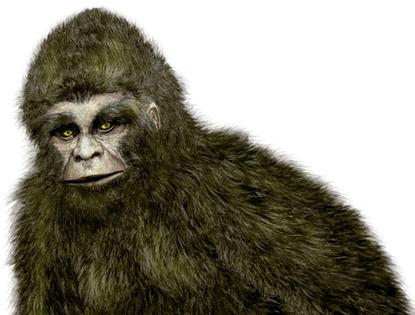 Yéti : un tête avec tête avec l'abominable homme des neiges