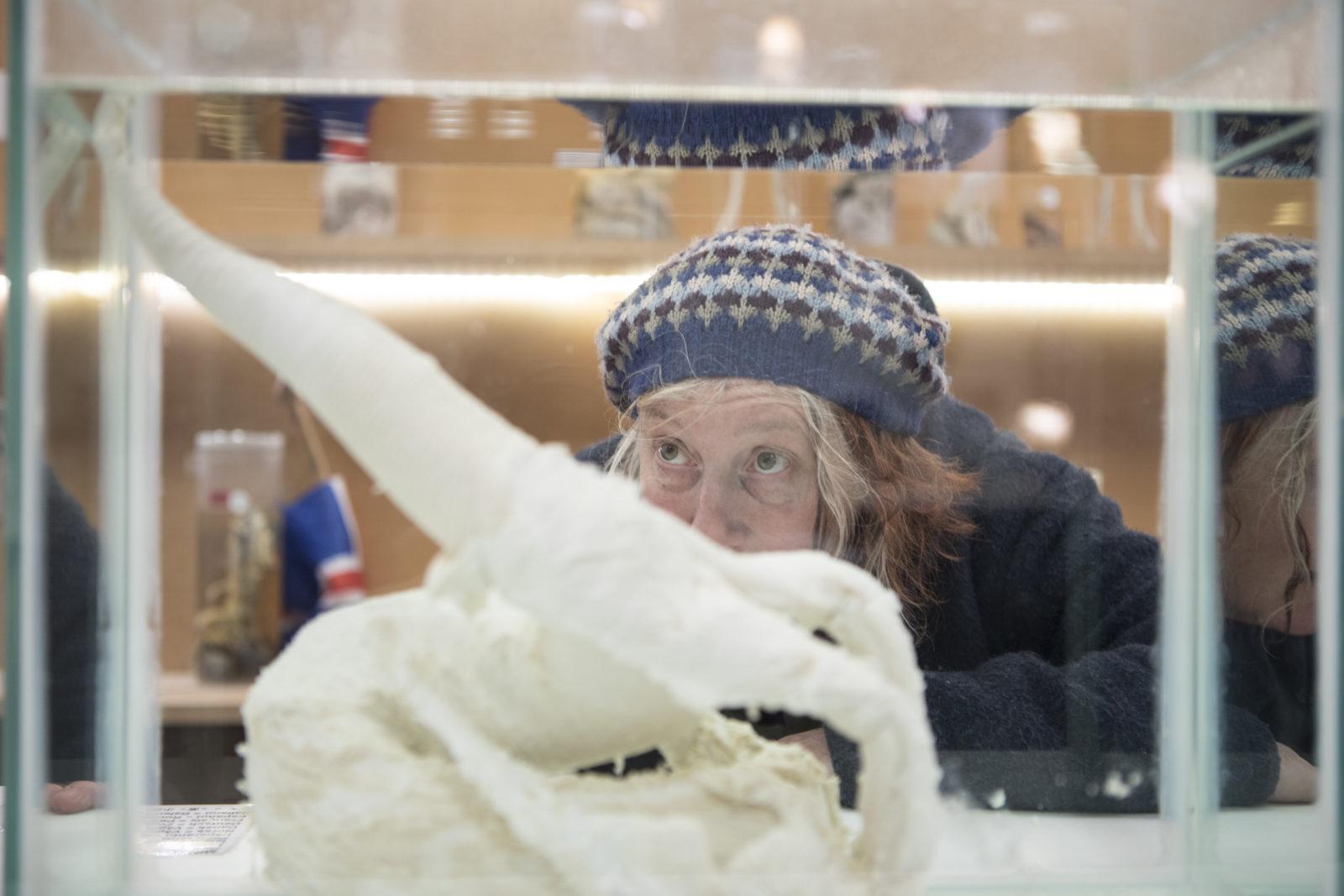 Hommage aux pénis : le dernier épisode du guide du queutard à Reykjavik